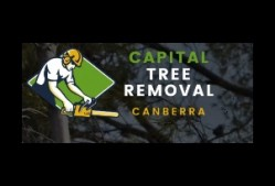 Capital Tree Removal Canberra